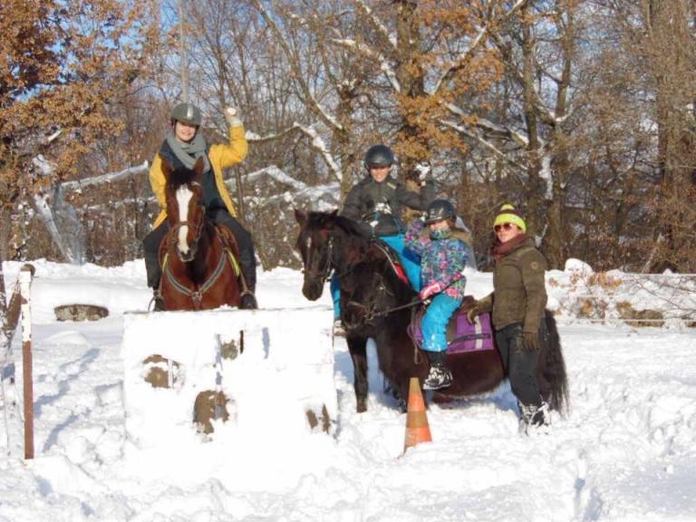 Poney dans la neige à Gap