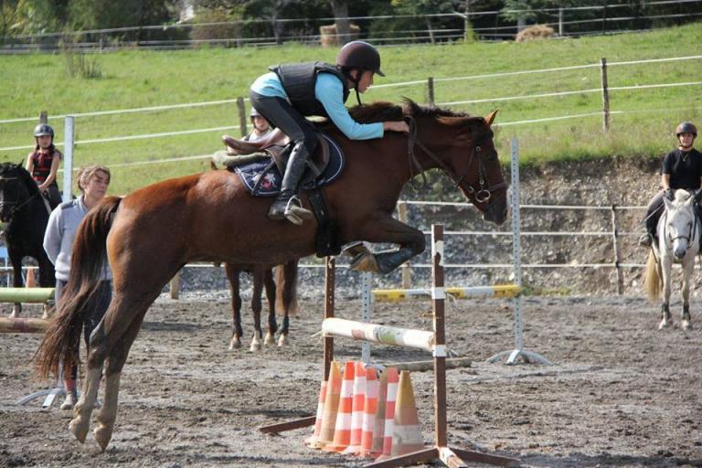 Cours d'équitation à Gap