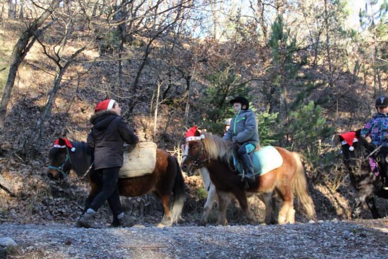 Promenade de Noel a poney