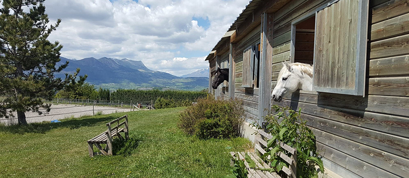 Pension chevaux ecuries du rigodon gap jarjayes